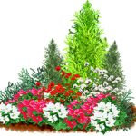 園芸装飾技能士とは?園芸装飾技能士の仕事