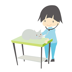 猫を診察する獣医師