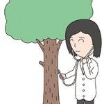 樹木医とは?樹木医の仕事