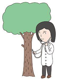 木を診る樹木医