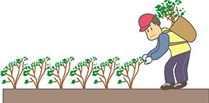 植林する人
