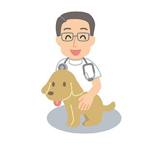 犬をあやす獣医